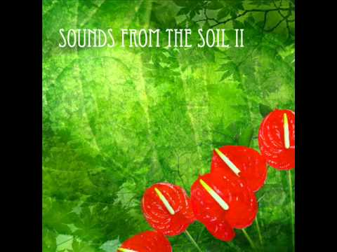 Music of the plants: Sound from the soil 2 (short edit) 432Hz