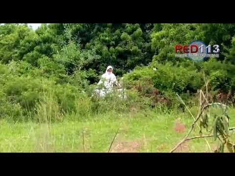 VIDEO Hallan a hombre estrangulado y maniatado, en el municipio de Morelia