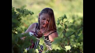 Accordéon ! Promenade musicale dans les vignes !