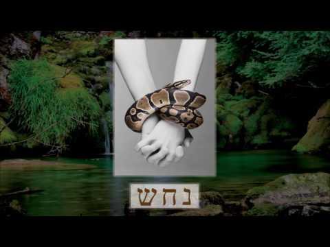 """""""Serpent"""" in ancient Hebrew! (Part I)"""
