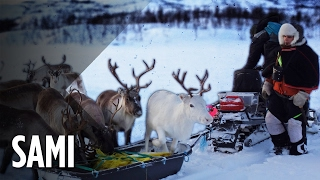 Arctic Reindeer Herders Surviving On The Edge Of The Earth