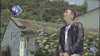 王中平-阿母的白頭鬃(官方完整版MV)HD