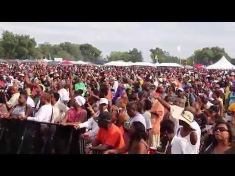 2014 Chosen Few Picnic, Jackson Park, Chicago, IL