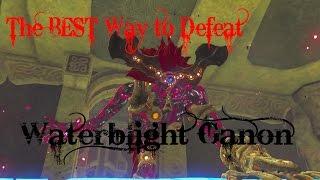 The BEST Way to Defeat Waterblight Ganon - Vah Ruta Divine Beast