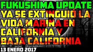 FUKUSHIMA ADIOS A LAS ESPECIES MARINAS DE CALIFORNIA