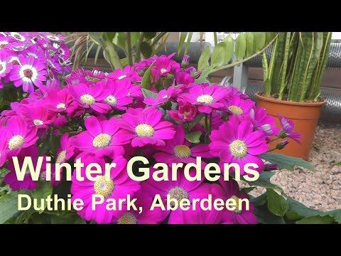 The Winter Gardens, Duthie Park, Aberdeen, Scotland.