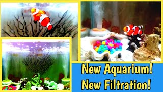 AQUARIUM SET UP IDEAS | SALT WATER TROPICAL FISH AQUARIUM  SET UP  WITH FILTER | DIY REEF TANK
