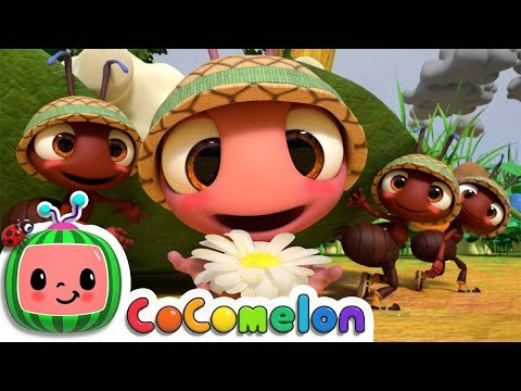 The Ants Go Marching | CoComelon Nursery Rhymes & Kids Songs