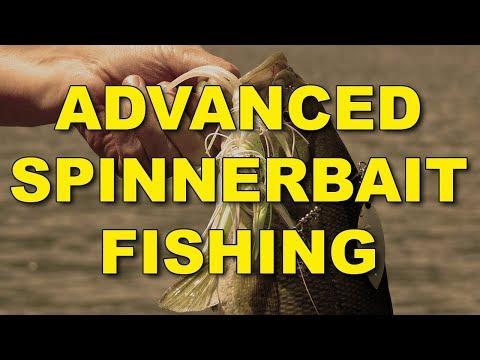 Advanced Spinnerbait Fishing | Bass Fishing