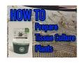 HOW TO: Prepare Tissue Culture Plants! || Cyrptocoryne Sp. Flamingo || Dennerle Plant-It!