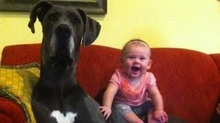 YouTubeが好きなアナタが必ず見ておくべき情報 http://goo.gl/1SMUcn コ...