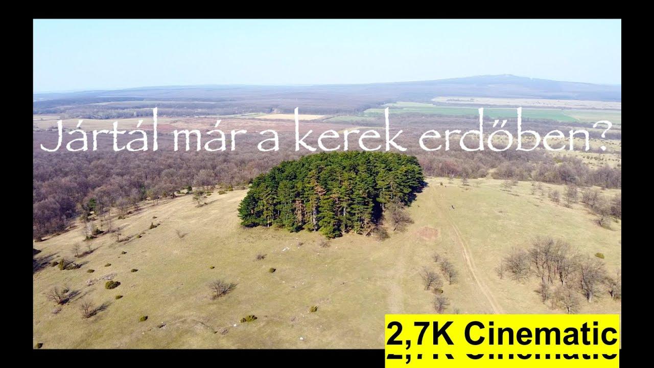 Halimba és a kerek erdő! Cinematic video! / Kirándulás tipp
