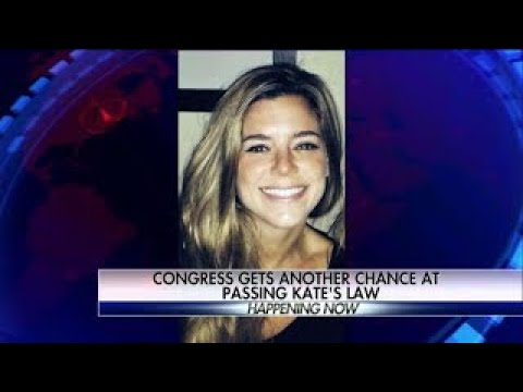WATCH: Kate's Law Vote in the HOUSE harsher Punishment on illegal Aliens and Sanctuary Cit