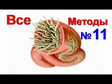 Intoxic средство от паразитов: инструкция, цена, отзывы