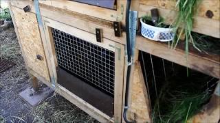 Клетка для кроликов от Золотухина - своими руками - проверено! работает!!!