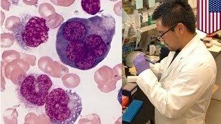 Учёные обнаружили антитела, заставляющие раковые клетки уничтожать друг друга(, 2015-10-26T16:26:30.000Z)