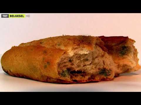 Ekmek Neden Bayatlar? Bilimsel Açıklaması
