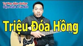 Tự Học Đàn Guitar: Đệm Hát Và Tỉa Nốt Solo Bài TRIỆU ĐÓA HOA HỒNG Giọng Em