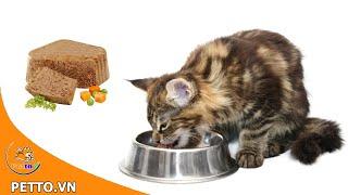 Cách Làm Pate Gà Cho Mèo Tại Nhà Giàu Dinh Dưỡng Tại Nhà - Petto TV