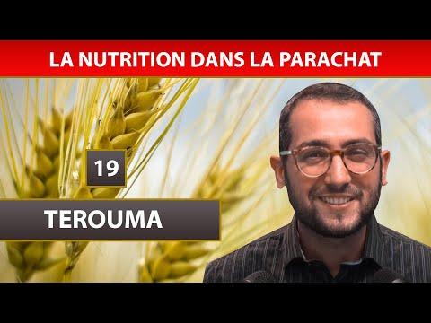 NUTRITION DANS LA PARACHAT 11 - TEROUMA 19 - Shalom Fitoussi