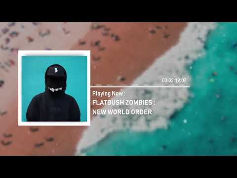FLATBUSH ZOMBiES - New World Order