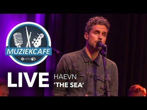 HAEVN - 'The Sea' Live Bij Muziekcafé
