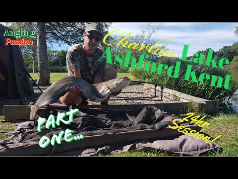 Cat Fishing UK Charlies Lake Ashford Kent- Part One My First 24hr Session Here