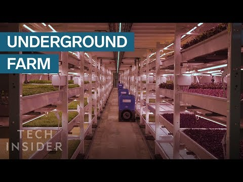 Underground Farm Produces 2 Tons Of Food A Month