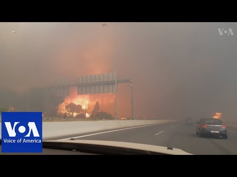 Scores Killed in Greece Wildfire