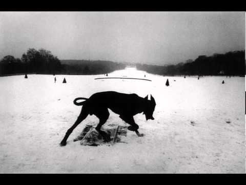 Will Oldham - All These Vicious Dogs