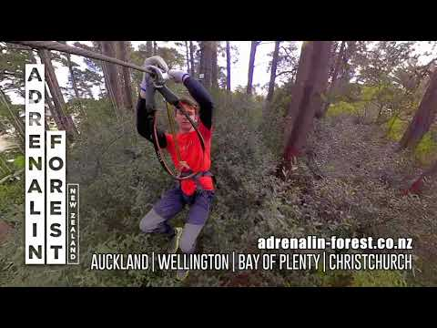 Adrenalin Forest - Now Nationwide
