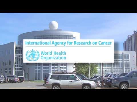United Nation's World Health Organization on EMF Radiation