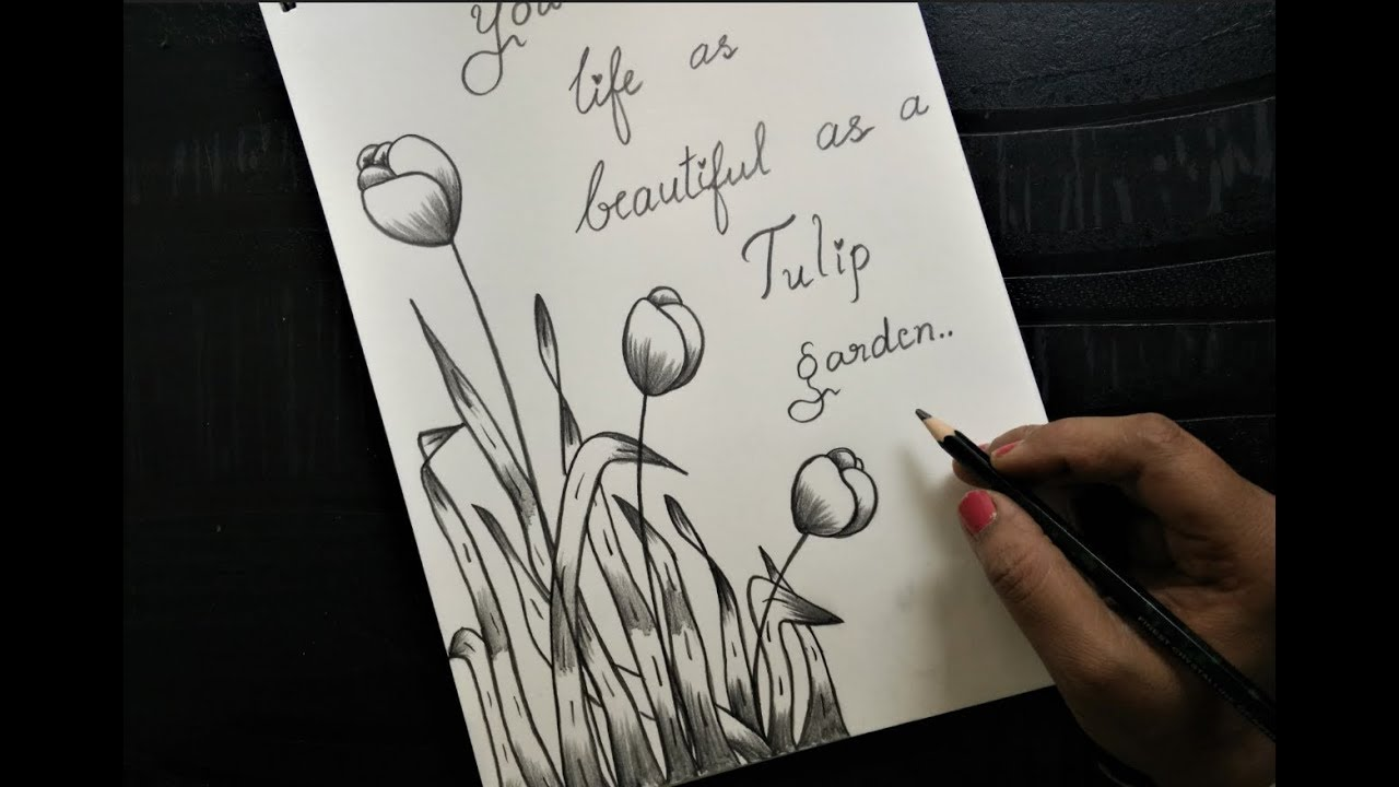 How to make greeting card with pencil sketch version 3 tulips
