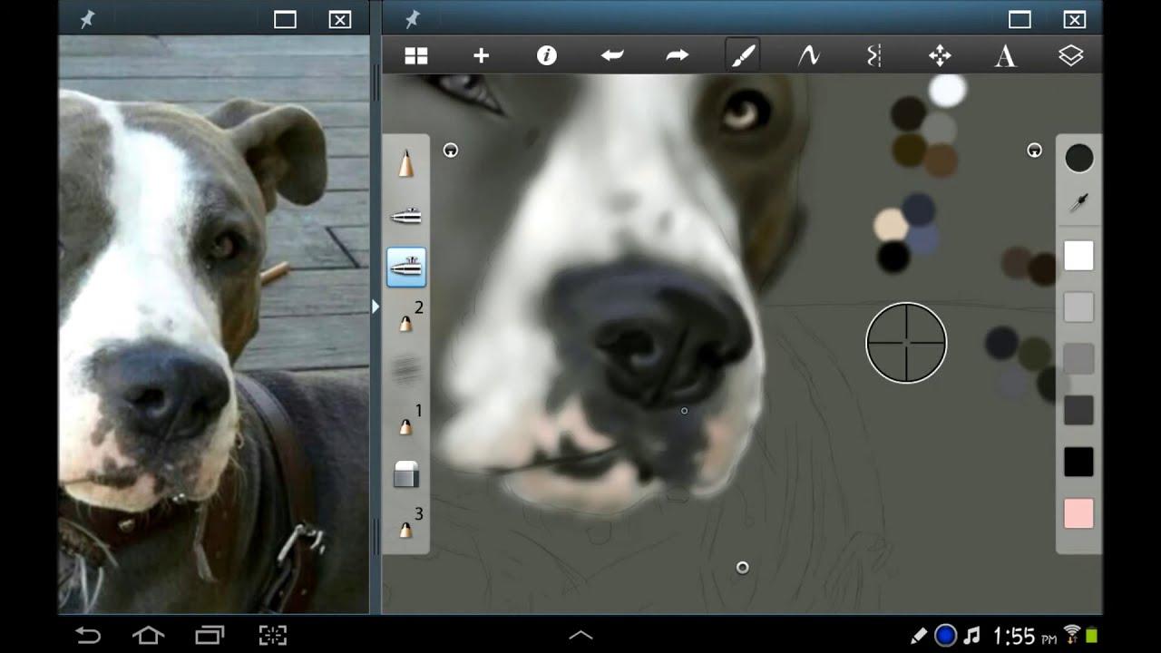 maxresdefault Pitbull Dog Art