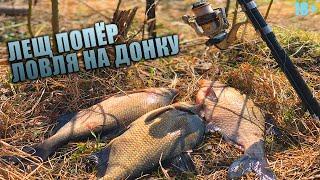 Вот это рыбалка на леща Жор леща Ловля леща весной Лещ на донки Рыбалка на реке весной