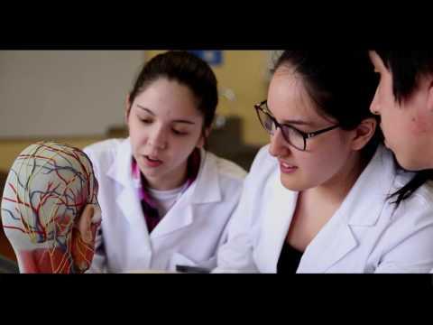 UMAG 2016 - Carrera de Medicina 2017