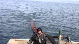Kaptan Kardeşler 1 Trol Video