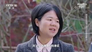 [跟着书本去旅行]拴马桩为什么通常立在门口?| 课本中国