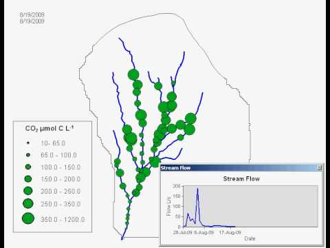 Headwater Carbon Dioxide Dynamics at Hubbard Brook