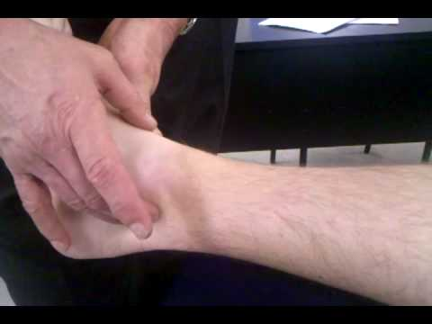 Dorsal Pedal Pulse and Posterior Tibial Artery - ST - YouTube