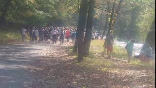 Out of the Darkness Walk Lehigh Valley 2018 4