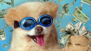 10 Weird Ways People Got Rich