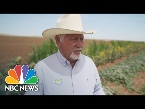 Worsening Drought Forces California Farmers To Make Tough Decisions