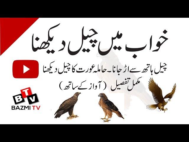 Khwab mein cheel dekhna ki tabeer with audio voice    khwabon ki tabeer    Khwab Nama