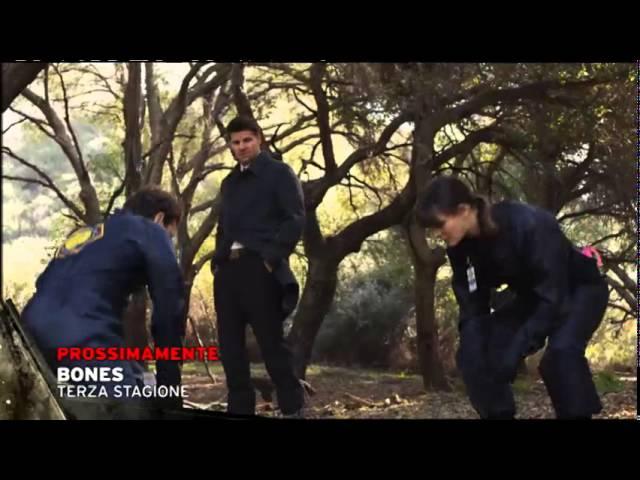 Top Crime Promo Bones
