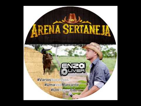 ABERTURA CD ARENA SERTANEJA thumbnail