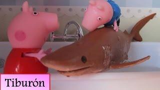 Peppa Pig y George se bañan con un tiburón de Sharks&Co | Vídeos de Peppa Pig para niños