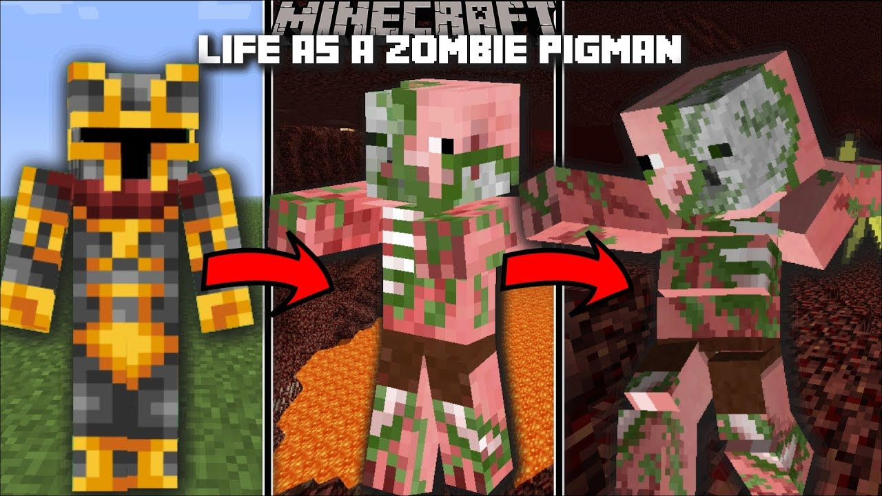 Minecraft LIFE AS A ZOMBIE PIGMAN MOD SURVIVE IN THE NETHER AND END