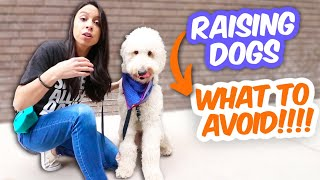 BEST (&amp WORST) ways to raise a dog, according to experts!  5 dog health tips I SWEAR by!!