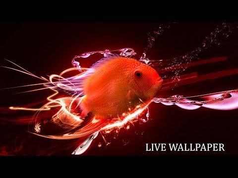 Android Aquarium Live Wallpaper